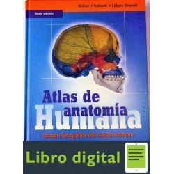 Atlas De Anatomia Humana Rohen, Yokochi