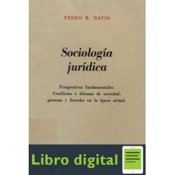 Sociologia Juridica Pedro R. David
