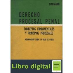 Derecho Procesal Penal. Conceptos Fund