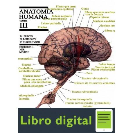 Anatomia Humana, Tomo Ill Angiologia,