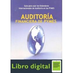 Auditoria Financiera De Pymes