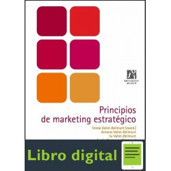 Principios De Marketing Estrategico