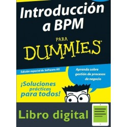 Introduccion A Bpm Para Dummies