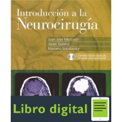 Introduccion A La Neurocirugia