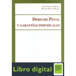 Derecho Penal Y Garantias Individuales