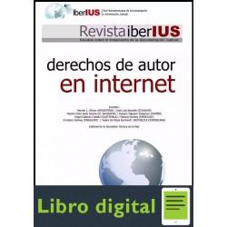 Derechos De Autor En Internet Varios Autores