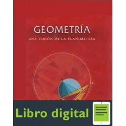 Geometria Una Vision A La Planimetria Lumbre