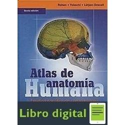 Atlas De Anatomia Humana 6ª Edicion ¿ Rohen Yokochi