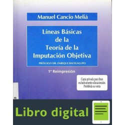 Lineas Basicas De La Teoria De La Imputacion Objetiva