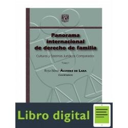Panorama Internacional De Derecho De Familia Tomo I