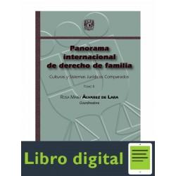 Panorama Internacional De Derecho De Familia Tomo Ii