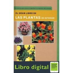 Plantas El Gran De Las Plantas De Interior