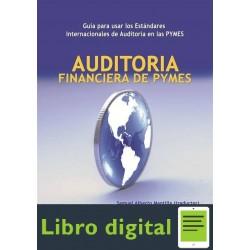 Auditoria Financiera De Pymes Samuel Mantilla