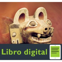 Museo Chileno De Arte Precolombino Tiwanaku