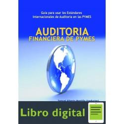 Auditoria Financiera De Pymes Mantilla