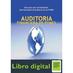 Auditoria Financiera De Pymes Guia