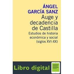 Auge Y Decadencia De Castilla Angel Garcia Sanz