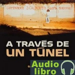 AudioLibro A traves de un túnel – Sara Arcos
